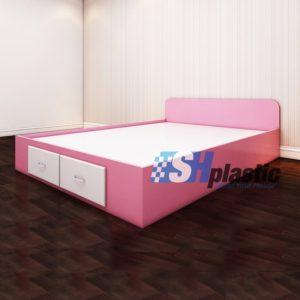 Mẫu giường ngủ nhựa đôi Người lớn cao cấp / SHplastic GN01